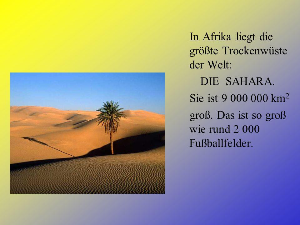 In Afrika liegt die größte Trockenwüste der Welt: DIE SAHARA.