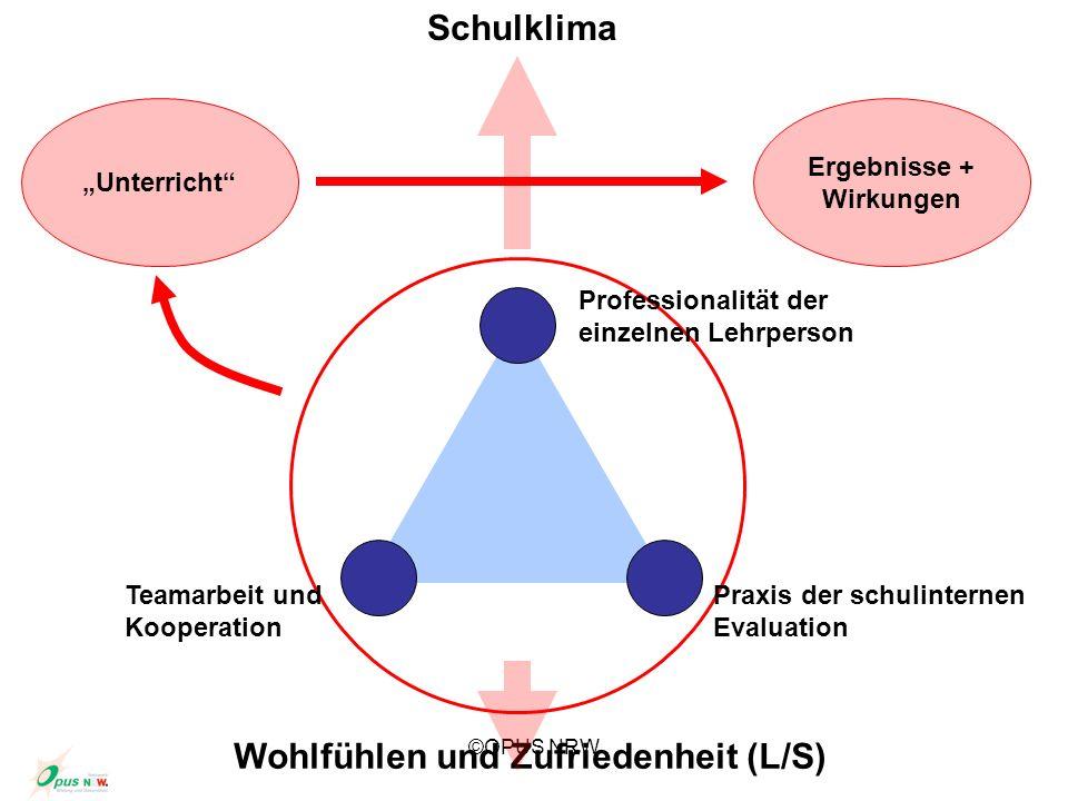 ©OPUS NRW Teamarbeit und Kooperation Professionalität der einzelnen Lehrperson Praxis der schulinternen Evaluation Unterricht Ergebnisse + Wirkungen W