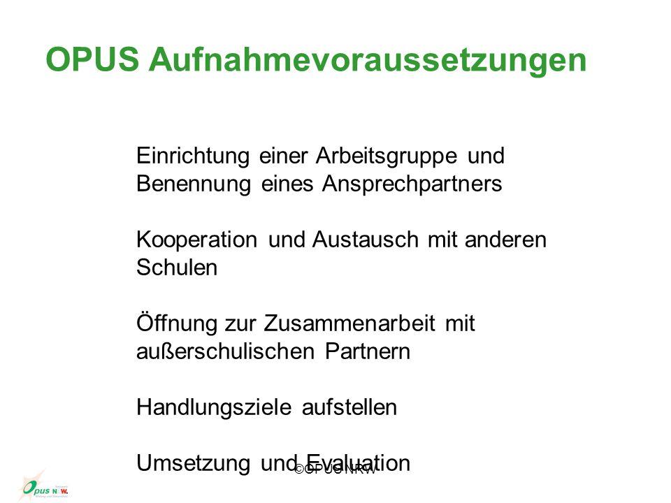 ©OPUS NRW Einrichtung einer Arbeitsgruppe und Benennung eines Ansprechpartners Kooperation und Austausch mit anderen Schulen Öffnung zur Zusammenarbei