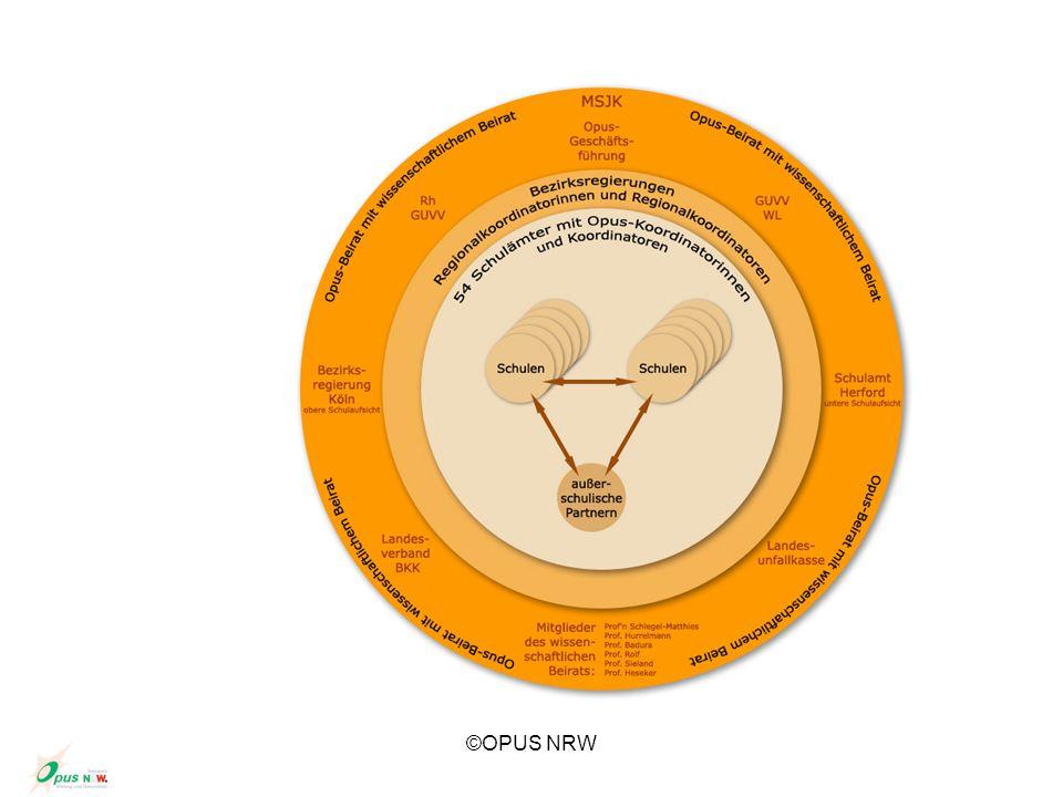 , Salutogenetisches Modell (Antonovsky) Ergänzung biomedizinischer Konzepte KrankheitGesundheit Kontinuum Indikatoren StressorenWiderstandsressourcen Kohärenzsinn (sense of coherence = SOC)...umfassendes, dauerhaftes und dynamisches Vertrauen, dass das Leben und seine Anforderungen verstehbar (comprehensive), handhabbar (manageable) und sinnerfüllt (meaningful) sind.