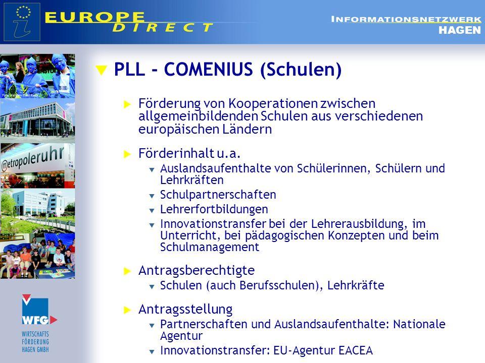 PLL - COMENIUS (Schulen) Förderung von Kooperationen zwischen allgemeinbildenden Schulen aus verschiedenen europäischen Ländern Förderinhalt u.a. Ausl
