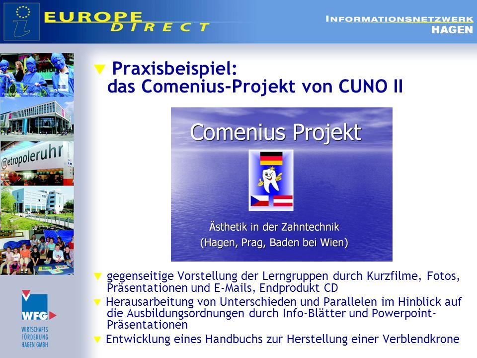 Praxisbeispiel: das Comenius-Projekt von CUNO II gegenseitige Vorstellung der Lerngruppen durch Kurzfilme, Fotos, Präsentationen und E-Mails, Endprodu