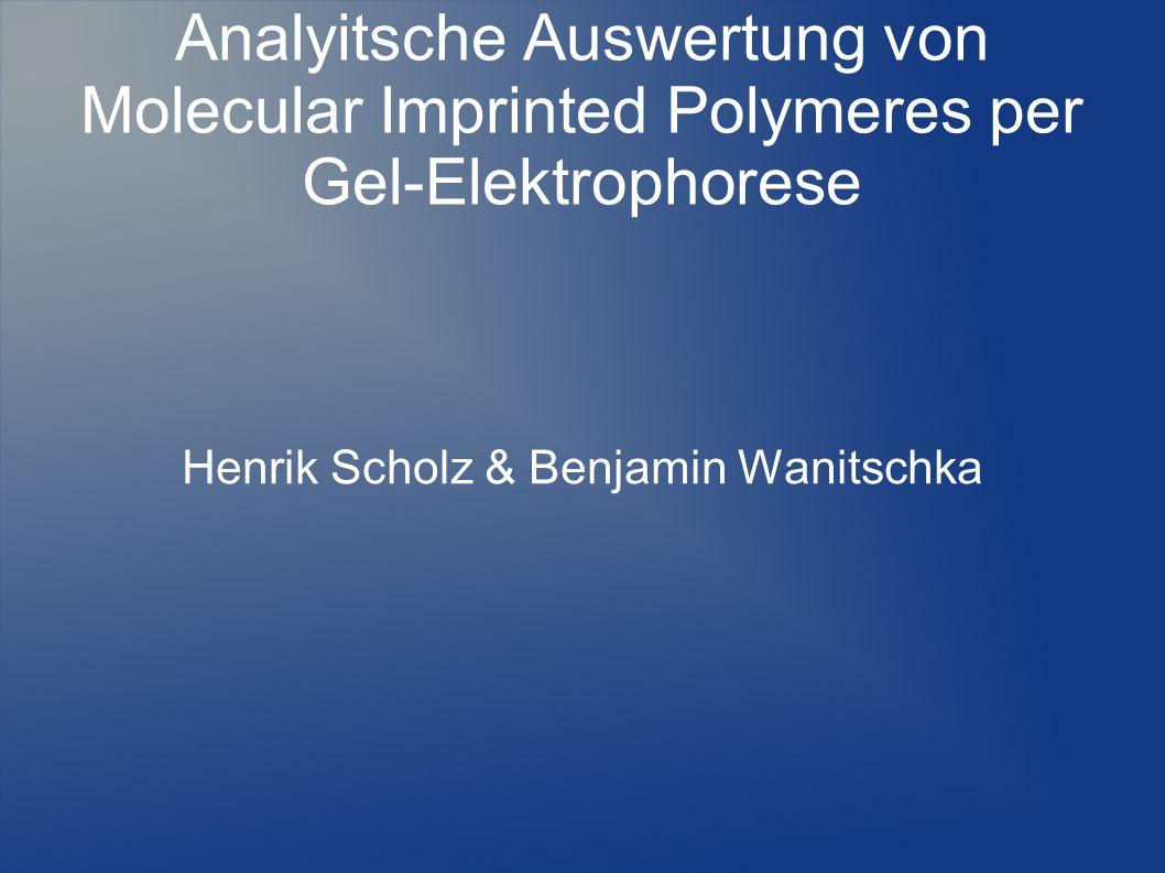 Übersicht Grundlagen der Elektrophorese Gel-Elektrophorese Herstellung MIPs Messung eines MIPs und eines NIPs Auswertung mit dem Densitometer Grund für diese Analyse-Methode Fragen?!?!