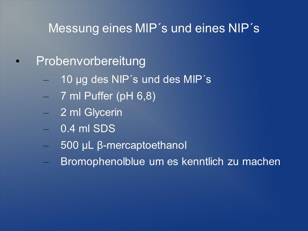 Messung eines MIP´s und eines NIP´s Probenvorbereitung – 10 µg des NIP´s und des MIP´s – 7 ml Puffer (pH 6,8) – 2 ml Glycerin – 0.4 ml SDS – 500 µL β-