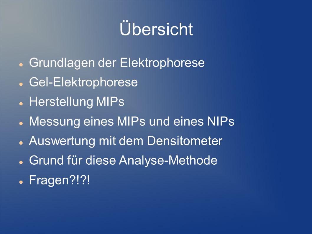Übersicht Grundlagen der Elektrophorese Gel-Elektrophorese Herstellung MIPs Messung eines MIPs und eines NIPs Auswertung mit dem Densitometer Grund fü