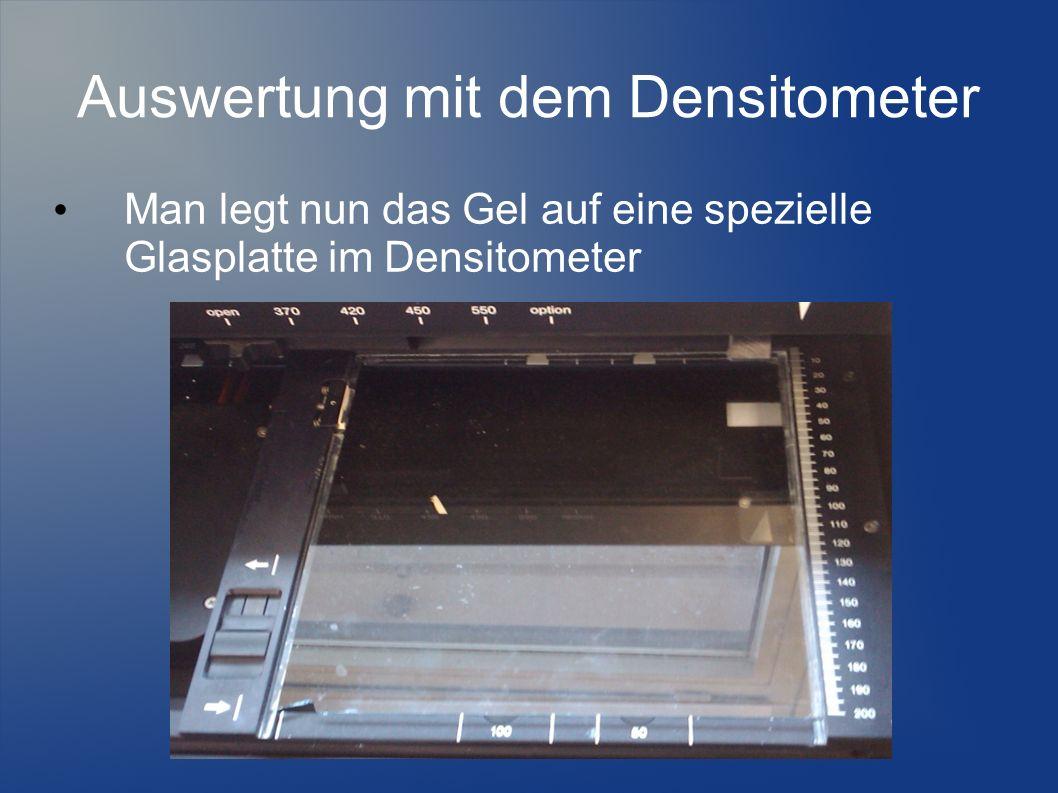 Man legt nun das Gel auf eine spezielle Glasplatte im Densitometer