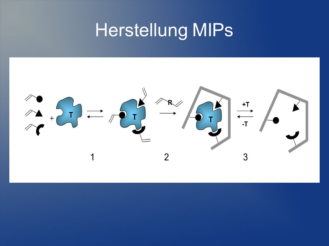 Grund für diese Analyse-Methode Der Grund für diese Methode ist, dass man überprüft ob die Polymere die man hergestellt hat so funktionieren oder wie gut sie funktionieren wie sie es sollen NIP´s (Nonimprinted Polymeres) Es ist das Polymer ohne Zusätze MIP´s (Molecular Imprinted Polymeres) Es bedeutet dass dieses Polymer ein Protein beinhaltet
