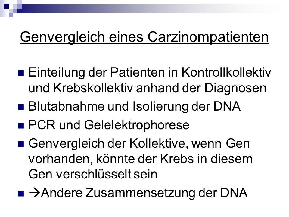 Genvergleich eines Carzinompatienten Einteilung der Patienten in Kontrollkollektiv und Krebskollektiv anhand der Diagnosen Blutabnahme und Isolierung