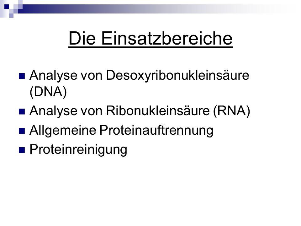 Die Einsatzbereiche Analyse von Desoxyribonukleinsäure (DNA) Analyse von Ribonukleinsäure (RNA) Allgemeine Proteinauftrennung Proteinreinigung