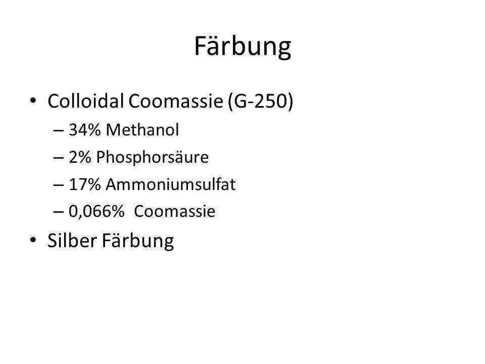 Färbung Colloidal Coomassie (G-250) – 34% Methanol – 2% Phosphorsäure – 17% Ammoniumsulfat – 0,066% Coomassie Silber Färbung