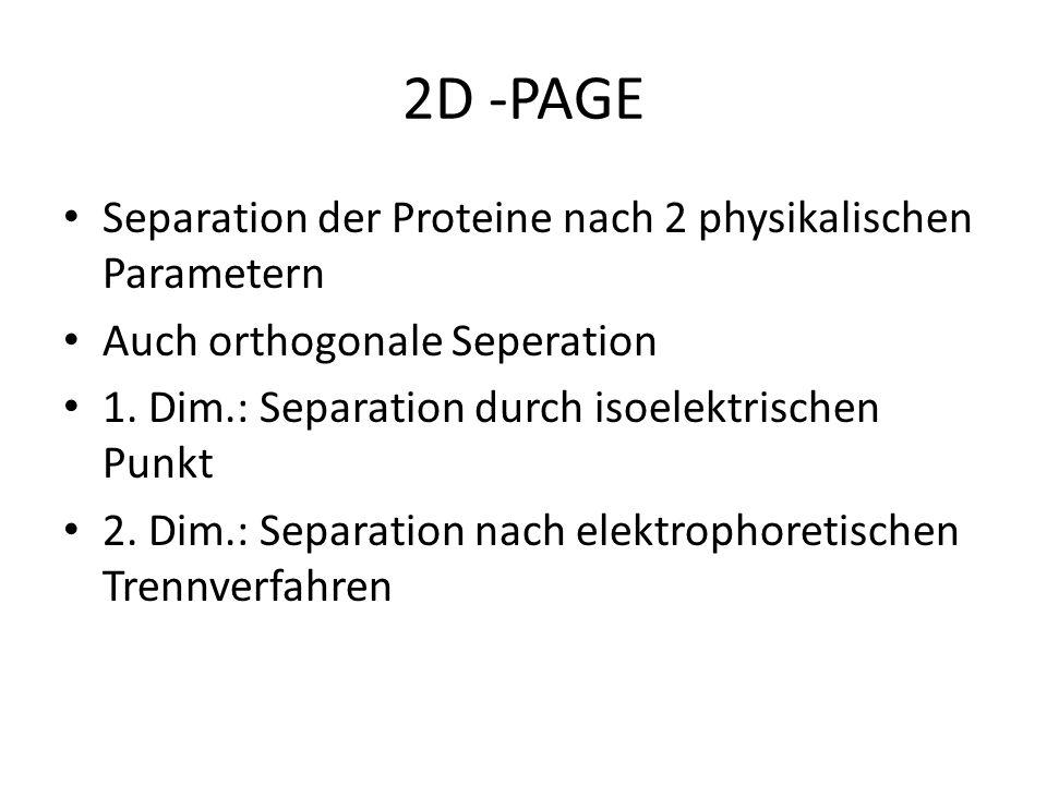 2D -PAGE Separation der Proteine nach 2 physikalischen Parametern Auch orthogonale Seperation 1. Dim.: Separation durch isoelektrischen Punkt 2. Dim.: