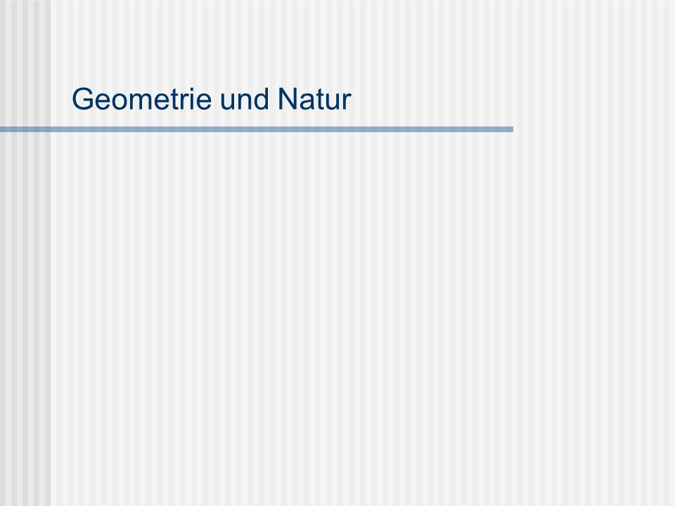 Geometrie und Natur