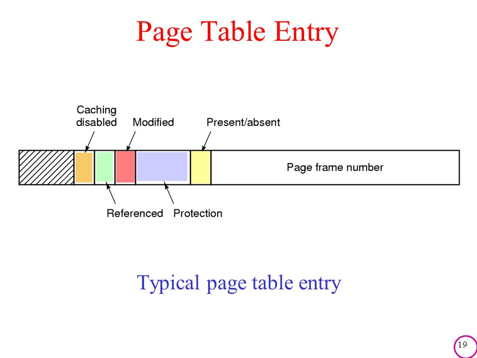 19 Page Table Entry Typical page table entry