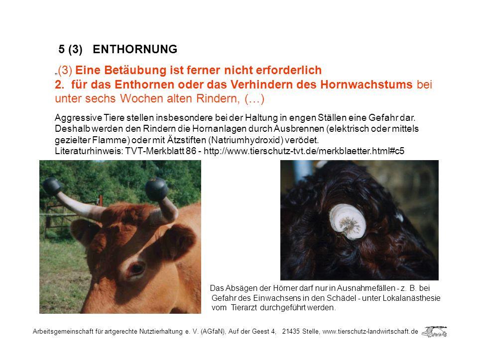 Arbeitsgemeinschaft für artgerechte Nutztierhaltung e. V. (AGfaN), Auf der Geest 4, 21435 Stelle, www.tierschutz-landwirtschaft.de 5 (3) ENTHORNUNG (3