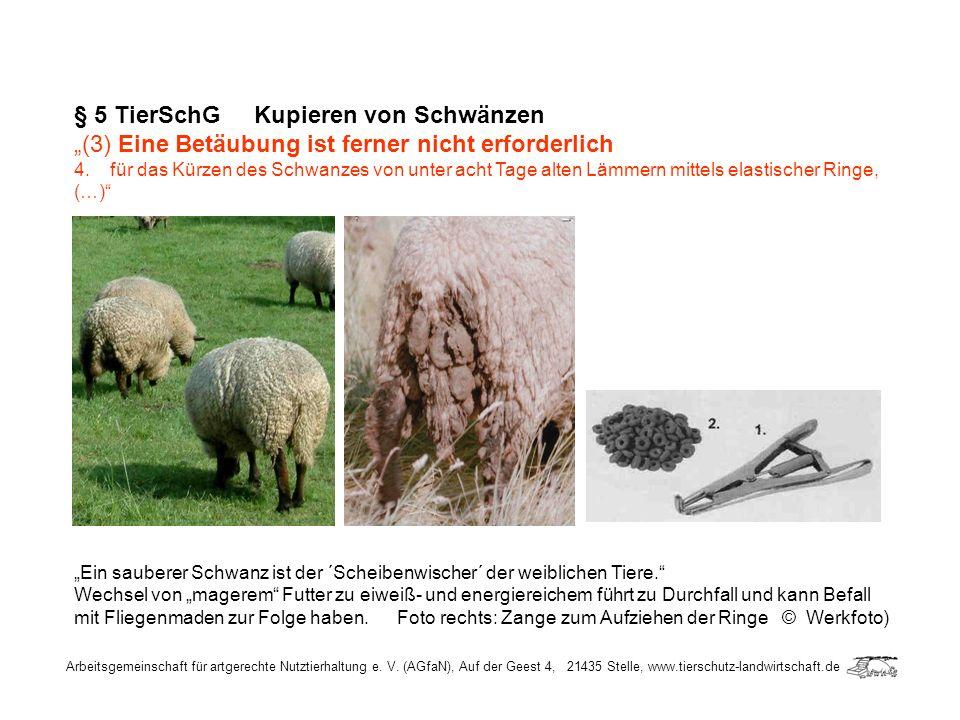 Arbeitsgemeinschaft für artgerechte Nutztierhaltung e. V. (AGfaN), Auf der Geest 4, 21435 Stelle, www.tierschutz-landwirtschaft.de § 5 TierSchG Kupier