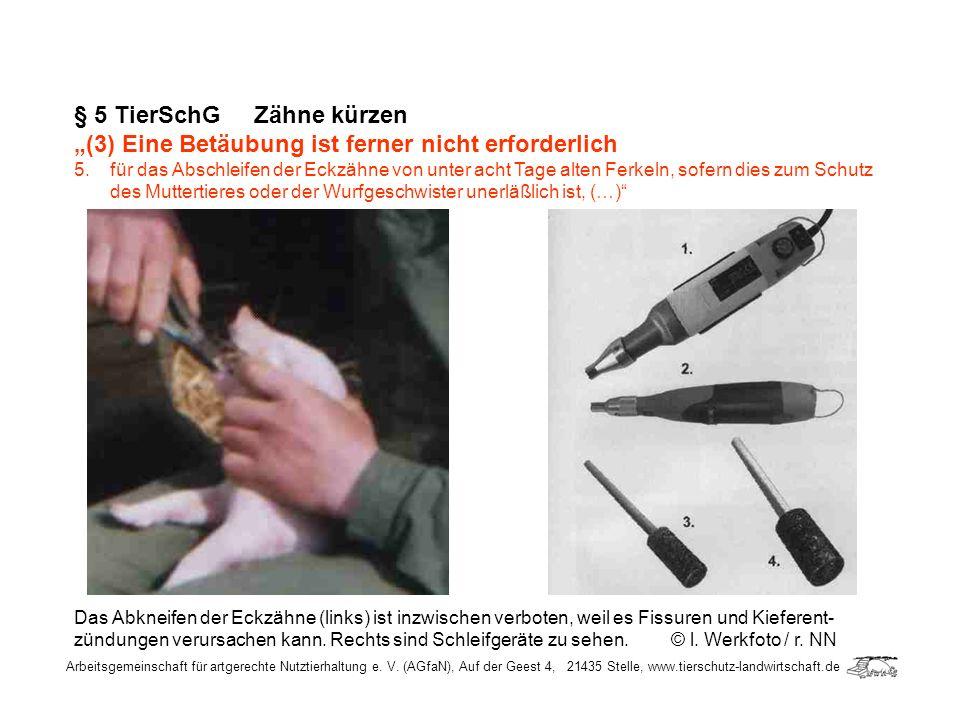 Arbeitsgemeinschaft für artgerechte Nutztierhaltung e. V. (AGfaN), Auf der Geest 4, 21435 Stelle, www.tierschutz-landwirtschaft.de § 5 TierSchG Zähne