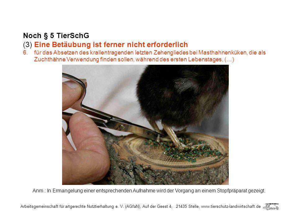 Arbeitsgemeinschaft für artgerechte Nutztierhaltung e. V. (AGfaN), Auf der Geest 4, 21435 Stelle, www.tierschutz-landwirtschaft.de Noch § 5 TierSchG (