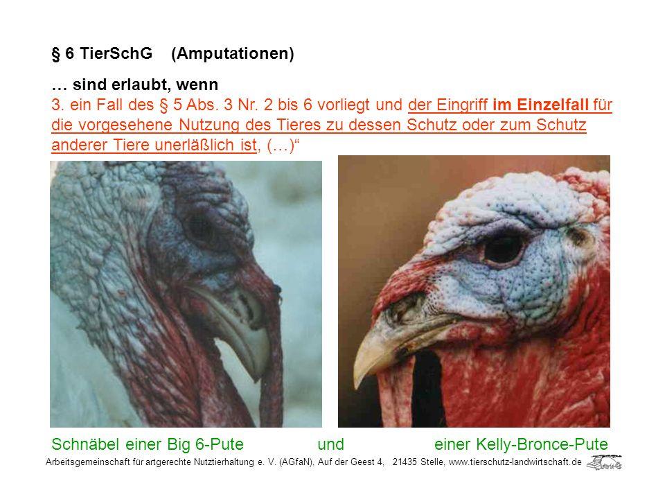 Arbeitsgemeinschaft für artgerechte Nutztierhaltung e. V. (AGfaN), Auf der Geest 4, 21435 Stelle, www.tierschutz-landwirtschaft.de § 6 TierSchG (Amput