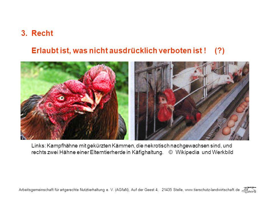 Arbeitsgemeinschaft für artgerechte Nutztierhaltung e. V. (AGfaN), Auf der Geest 4, 21435 Stelle, www.tierschutz-landwirtschaft.de 3.Recht Erlaubt ist