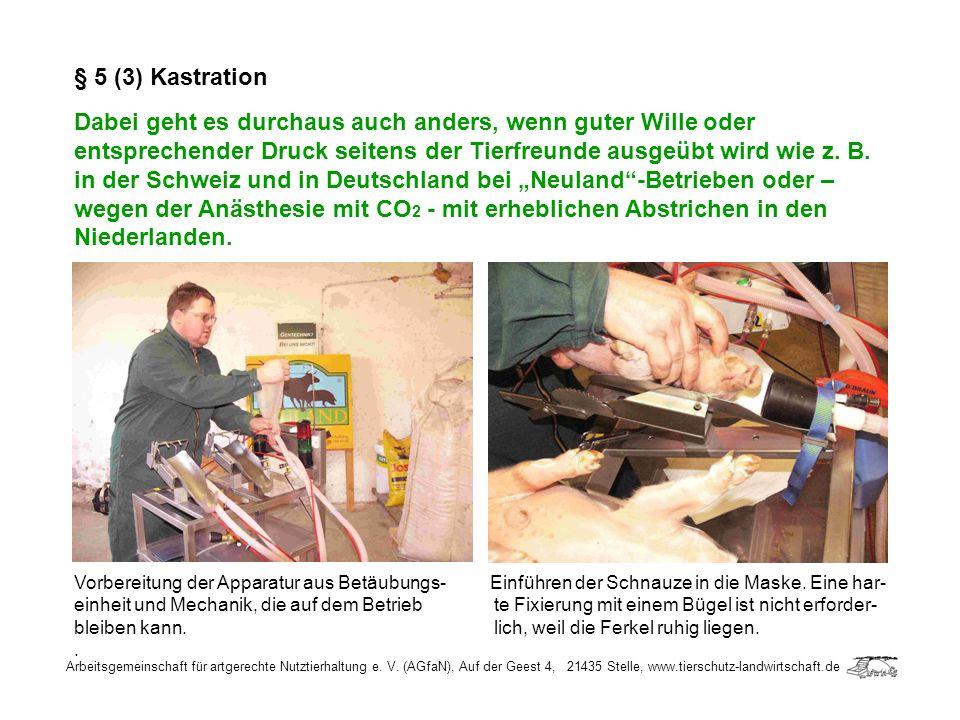 Arbeitsgemeinschaft für artgerechte Nutztierhaltung e. V. (AGfaN), Auf der Geest 4, 21435 Stelle, www.tierschutz-landwirtschaft.de § 5 (3) Kastration