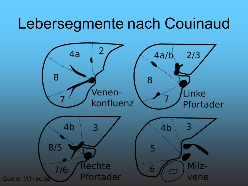 Lebersegmente nach Couinaud Quelle: Wikipedia