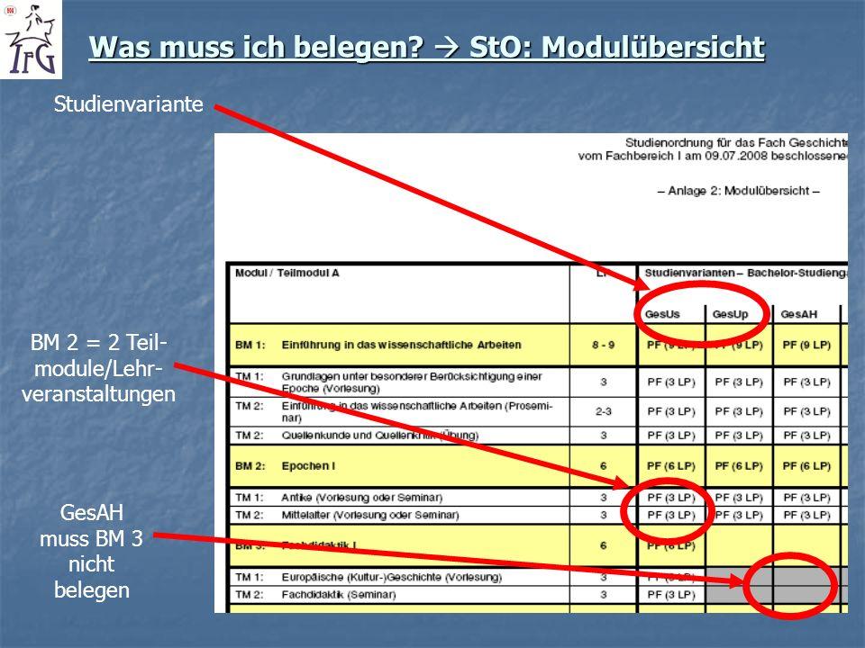 Was muss ich belegen? StO: Modulübersicht Studienvariante BM 2 = 2 Teil- module/Lehr- veranstaltungen GesAH muss BM 3 nicht belegen