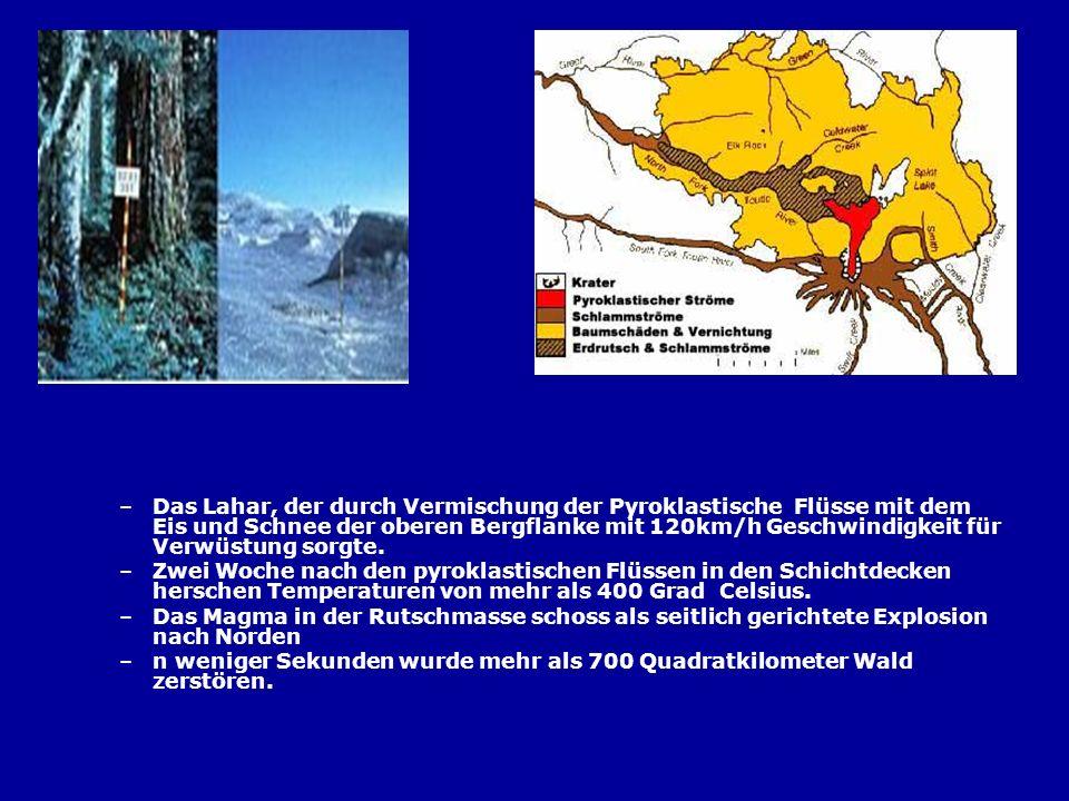 –Das Lahar, der durch Vermischung der Pyroklastische Flüsse mit dem Eis und Schnee der oberen Bergflanke mit 120km/h Geschwindigkeit für Verwüstung so