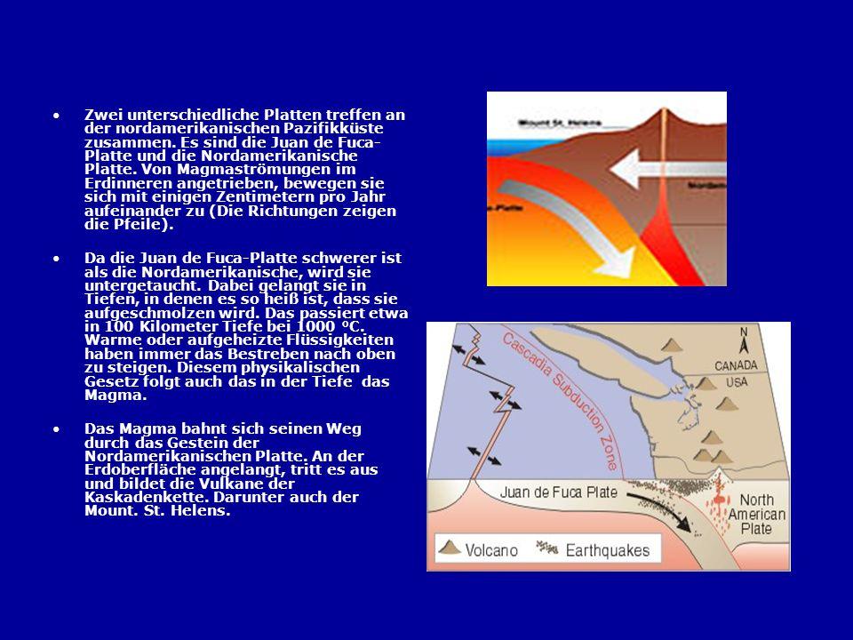 Zwei unterschiedliche Platten treffen an der nordamerikanischen Pazifikküste zusammen. Es sind die Juan de Fuca- Platte und die Nordamerikanische Plat
