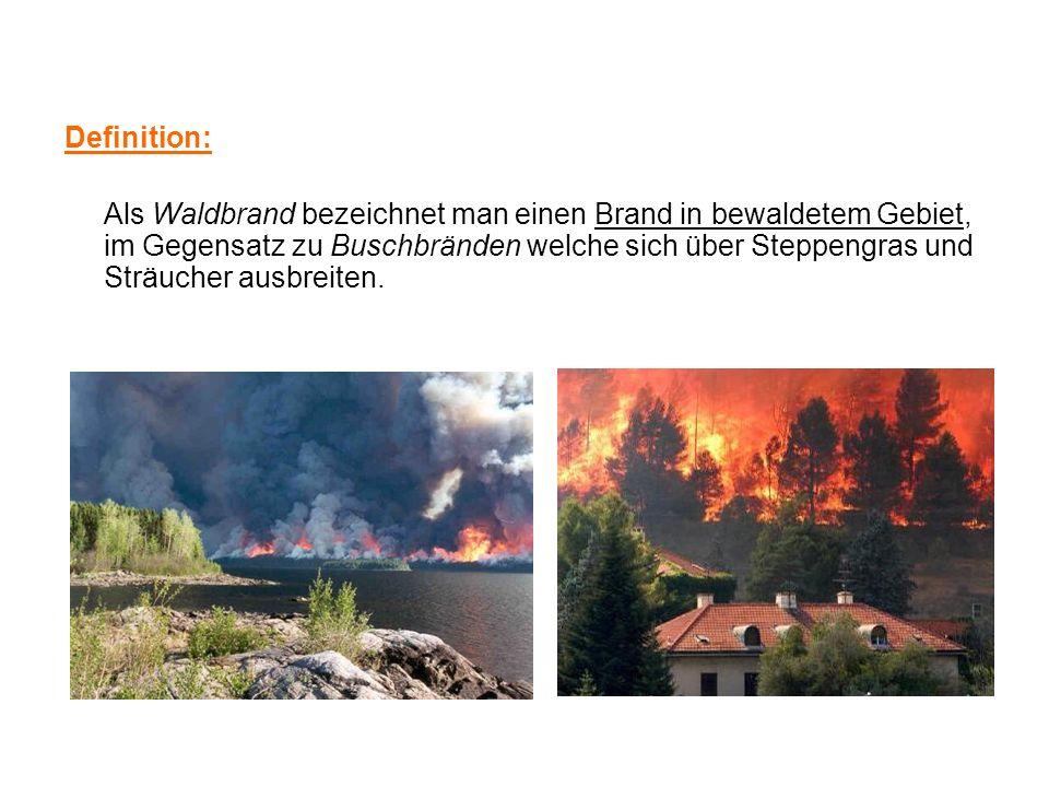 Definition: Als Waldbrand bezeichnet man einen Brand in bewaldetem Gebiet, im Gegensatz zu Buschbränden welche sich über Steppengras und Sträucher aus