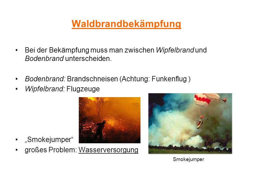 Waldbrandbekämpfung Bei der Bekämpfung muss man zwischen Wipfelbrand und Bodenbrand unterscheiden. Bodenbrand: Brandschneisen (Achtung: Funkenflug ) W