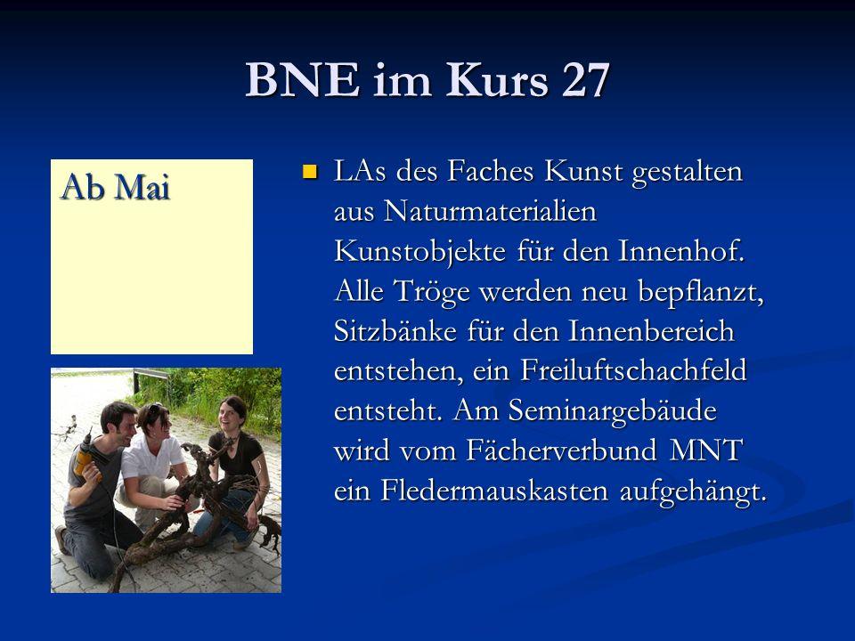 BNE im Kurs 27 LAs des Faches Kunst gestalten aus Naturmaterialien Kunstobjekte für den Innenhof.