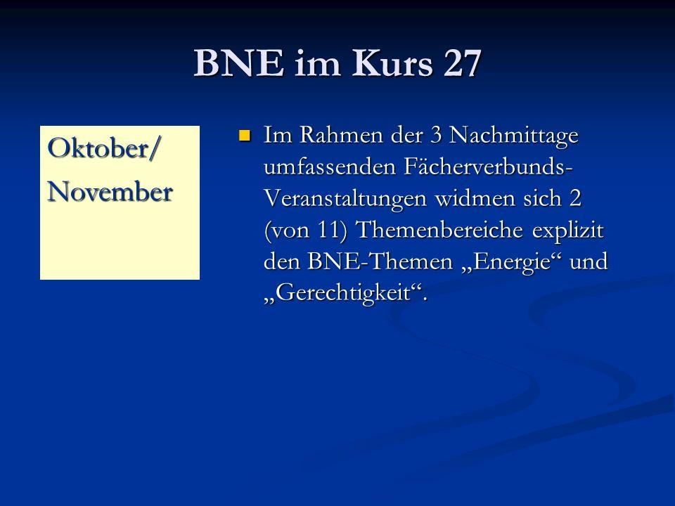 BNE im Kurs 27 Im Rahmen der 3 Nachmittage umfassenden Fächerverbunds- Veranstaltungen widmen sich 2 (von 11) Themenbereiche explizit den BNE-Themen Energie und Gerechtigkeit.