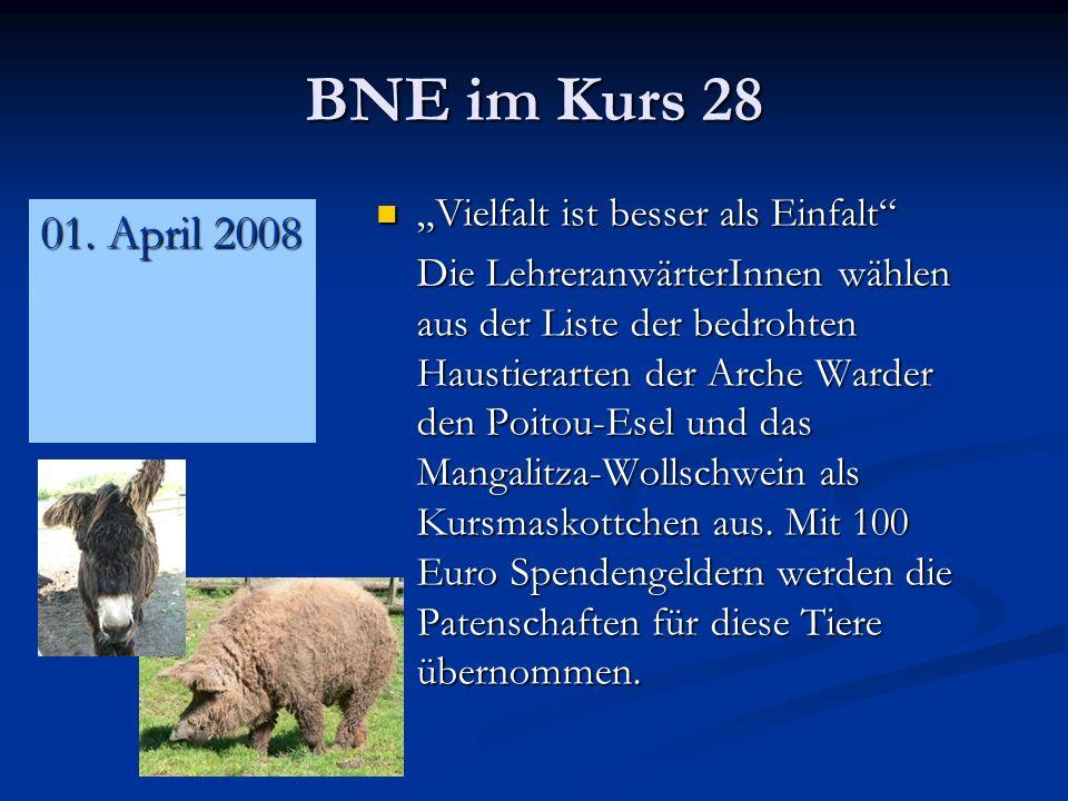 BNE im Kurs 28 Vielfalt ist besser als Einfalt Vielfalt ist besser als Einfalt Die LehreranwärterInnen wählen aus der Liste der bedrohten Haustierarten der Arche Warder den Poitou-Esel und das Mangalitza-Wollschwein als Kursmaskottchen aus.