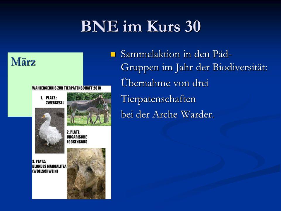 BNE im Kurs 30 Sammelaktion in den Päd- Gruppen im Jahr der Biodiversität: Sammelaktion in den Päd- Gruppen im Jahr der Biodiversität: Übernahme von drei Tierpatenschaften bei der Arche Warder.