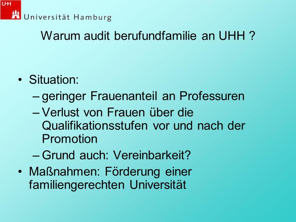 Personen und Aufgabenverteilung im Auditierungsprozess 16 PersonenAufgaben Auditor/inModerator/in resp.