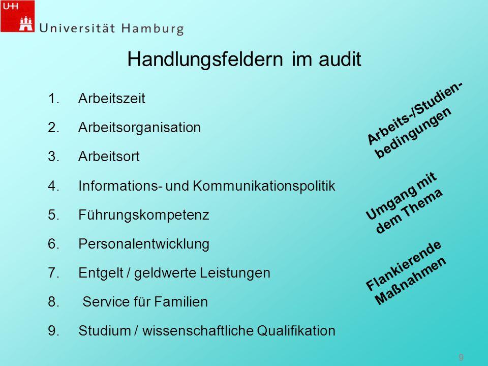 Handlungsfeldern im audit 1.Arbeitszeit 2.Arbeitsorganisation 3.Arbeitsort 4.Informations- und Kommunikationspolitik 5.Führungskompetenz 6.Personalent