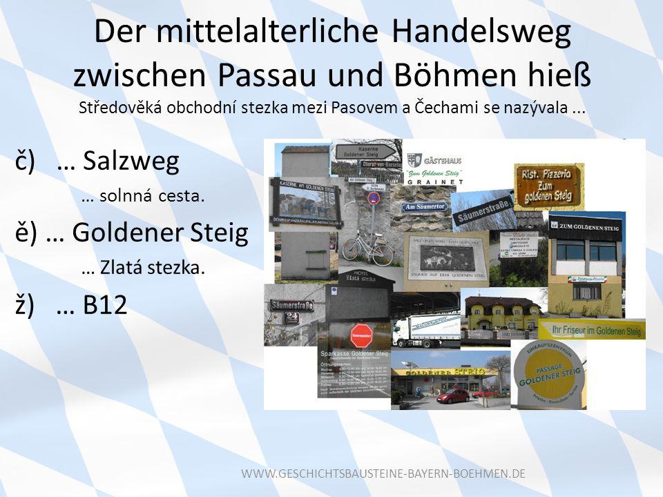Der mittelalterliche Handelsweg zwischen Passau und Böhmen hieß Středověká obchodní stezka mezi Pasovem a Čechami se nazývala... č) … Salzweg … solnná