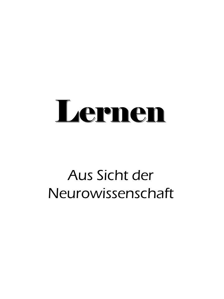 Lernen Aus Sicht der Neurowissenschaft