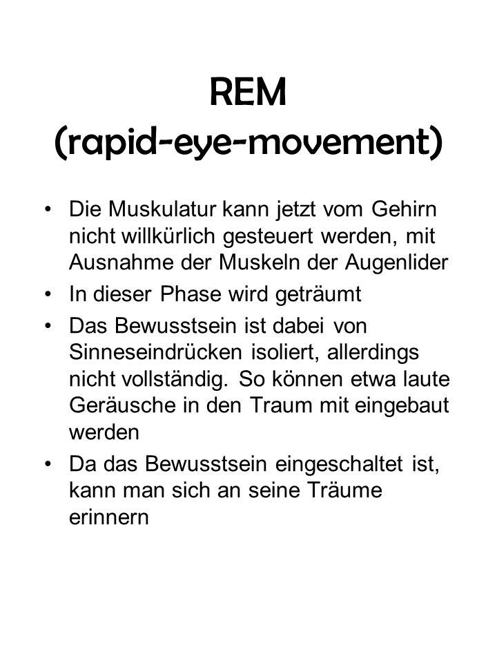 REM (rapid-eye-movement) Die Muskulatur kann jetzt vom Gehirn nicht willkürlich gesteuert werden, mit Ausnahme der Muskeln der Augenlider In dieser Ph