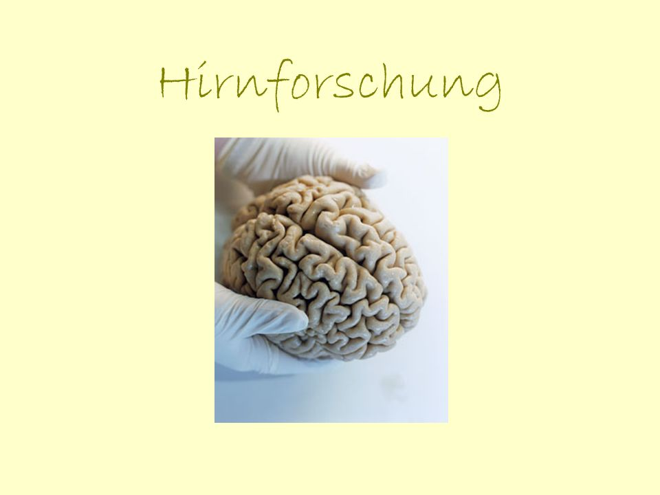 Was ist Hirnforschung.