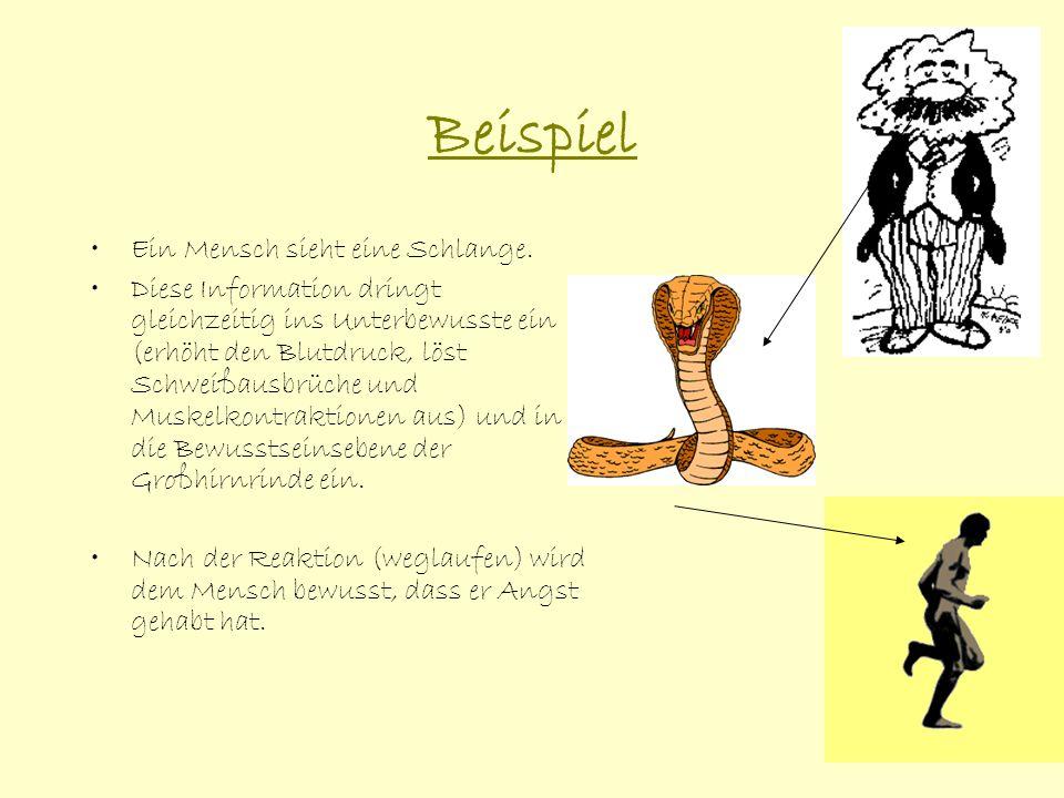 Beispiel Ein Mensch sieht eine Schlange. Diese Information dringt gleichzeitig ins Unterbewusste ein (erhöht den Blutdruck, löst Schweißausbrüche und