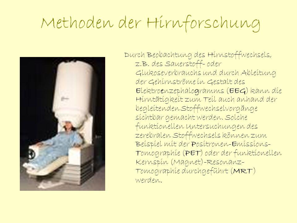 Die Position Manfred Spitzers zur Willensfreiheit Manfred Spitzer, Philosoph, Psychologe und Neurologe in Ulm, zeichnet in seinem Buch den Menschen als bewertendes, entscheidendes und handelndes Individuum.