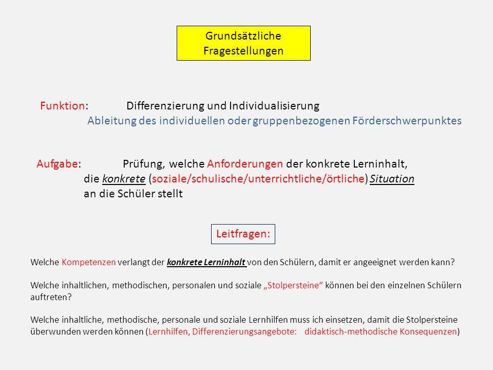 Grundsätzliche Fragestellungen Funktion: Differenzierung und Individualisierung Ableitung des individuellen oder gruppenbezogenen Förderschwerpunktes