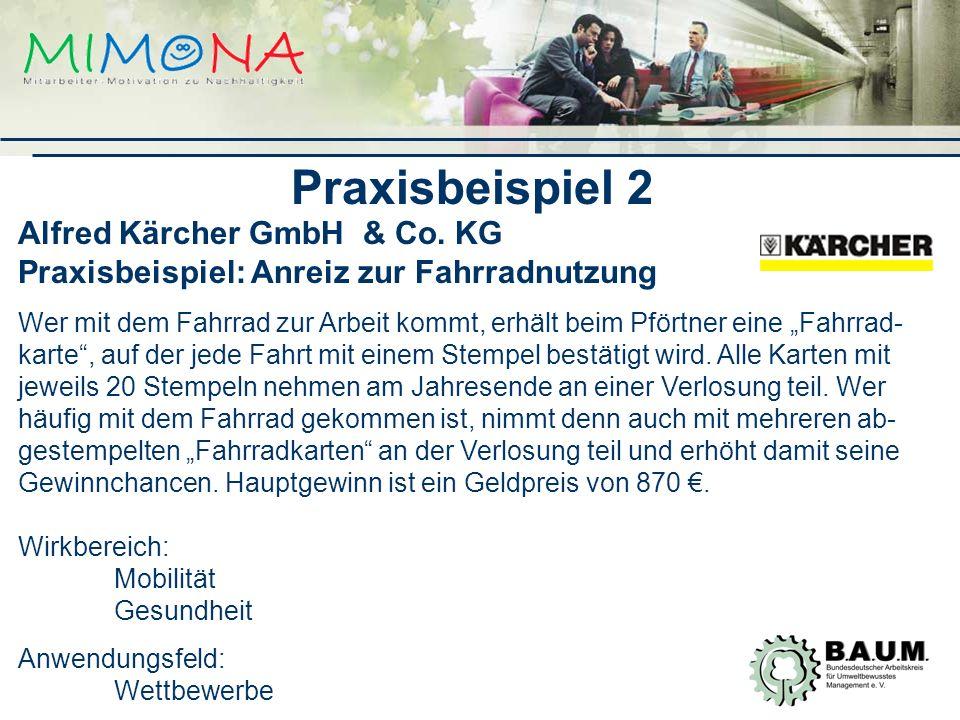 Alfred Kärcher GmbH & Co.