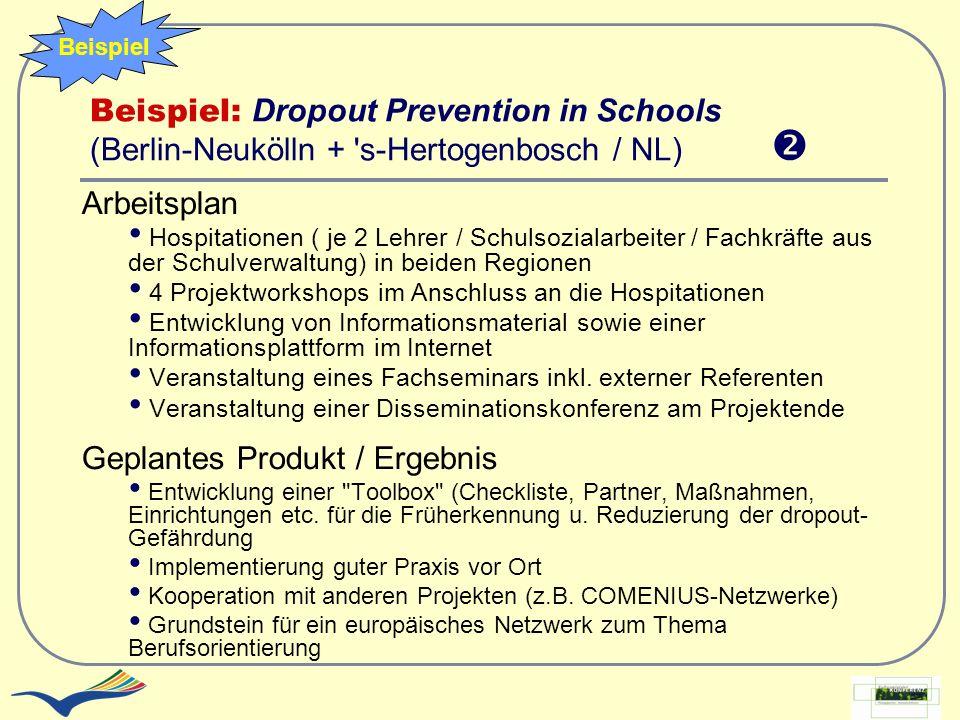 Beispiel: Dropout Prevention in Schools (Berlin-Neukölln + 's-Hertogenbosch / NL) Arbeitsplan Hospitationen ( je 2 Lehrer / Schulsozialarbeiter / Fach