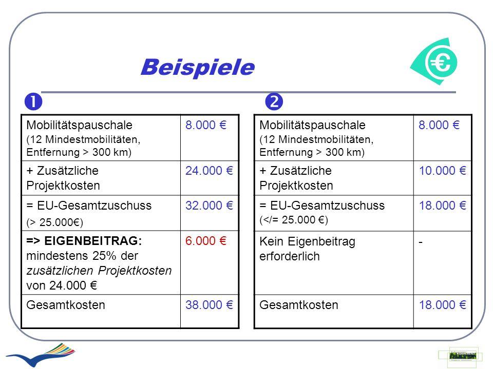 Beispiele Mobilitätspauschale (12 Mindestmobilitäten, Entfernung > 300 km) 8.000 + Zusätzliche Projektkosten 24.000 = EU-Gesamtzuschuss (> 25.000) 32.