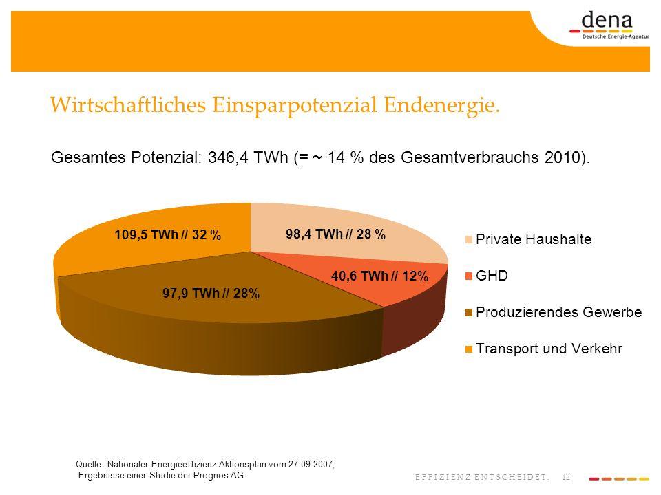 12 EFFIZIENZ ENTSCHEIDET. Wirtschaftliches Einsparpotenzial Endenergie. Quelle: Nationaler Energieeffizienz Aktionsplan vom 27.09.2007; Ergebnisse ein