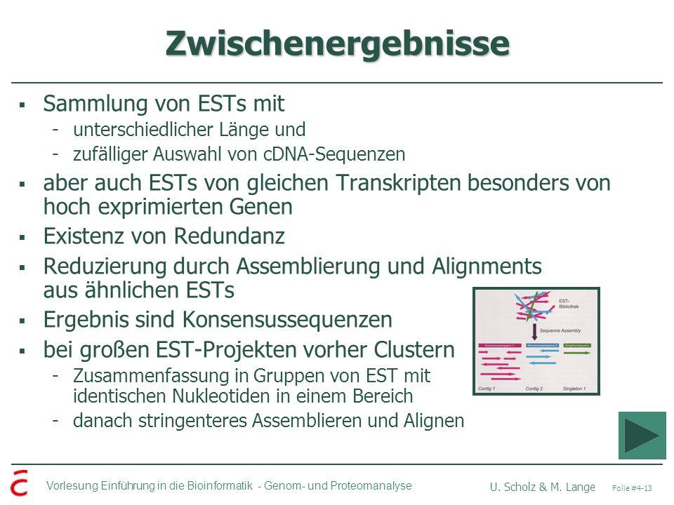 Vorlesung Einführung in die Bioinformatik - U. Scholz & M. Lange Folie #4-13 Genom- und Proteomanalyse Zwischenergebnisse Sammlung von ESTs mit -unter