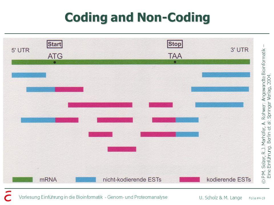 Vorlesung Einführung in die Bioinformatik - U. Scholz & M. Lange Folie #4-19 Genom- und Proteomanalyse Coding and Non-Coding ©P.M. Selzer, R.J. Marhöf