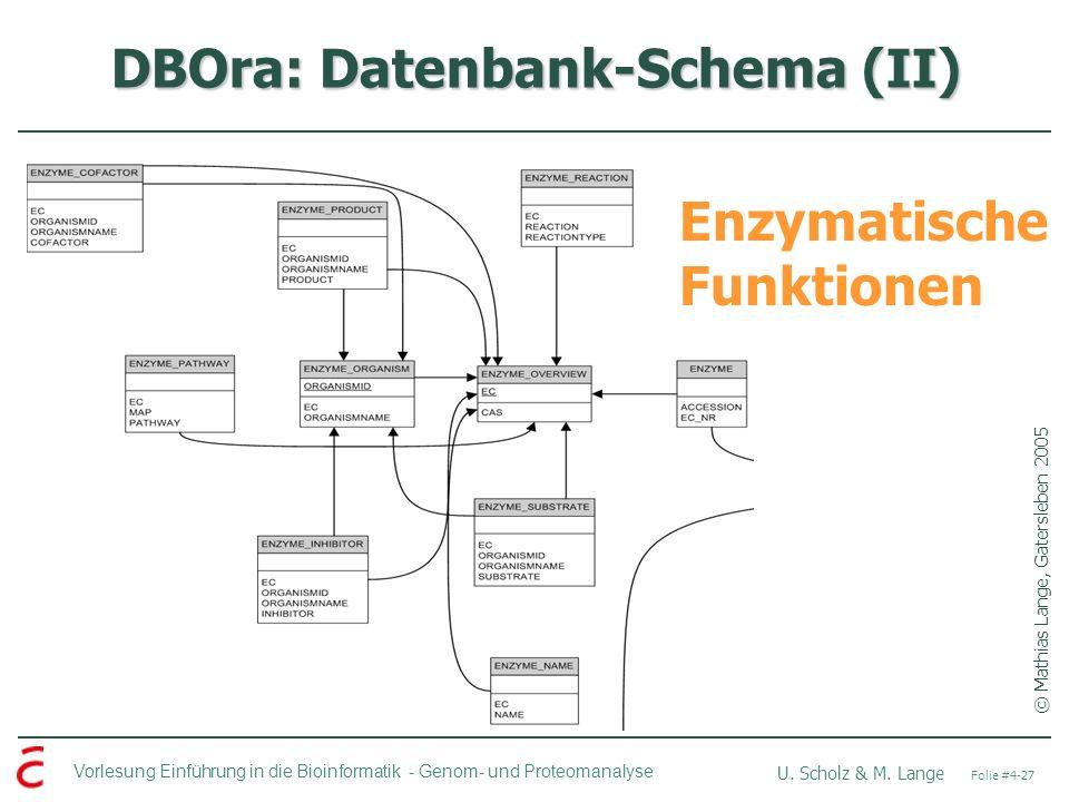 Vorlesung Einführung in die Bioinformatik - U. Scholz & M. Lange Folie #4-27 Genom- und Proteomanalyse DBOra: Datenbank-Schema (II) © Mathias Lange, G